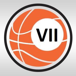 VII Lyga
