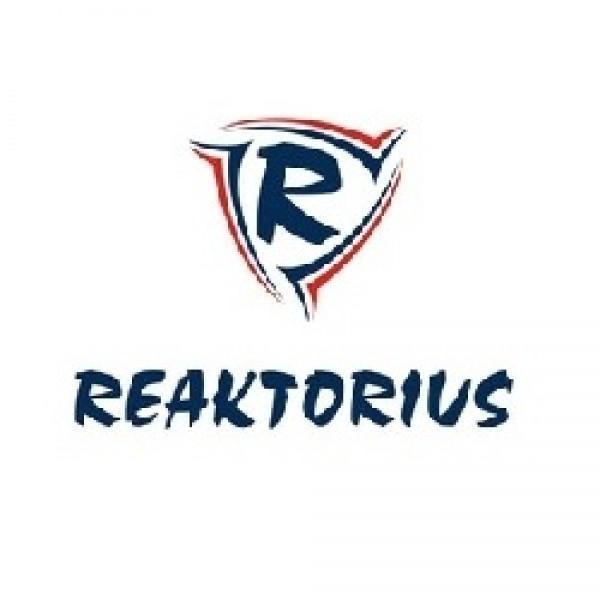 Reaktorius - www.videocv.io